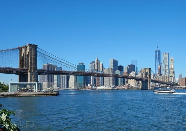 1 Bedroom, DUMBO Rental in NYC for $3,621 - Photo 2