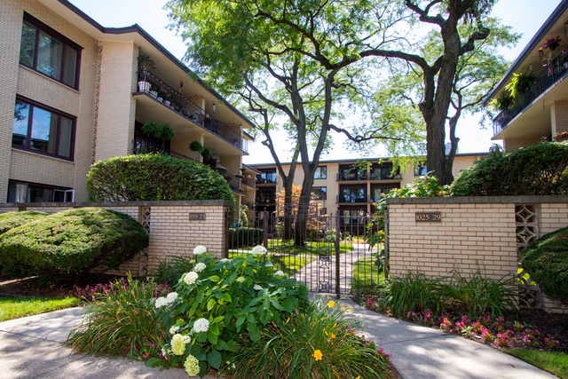 2 Bedrooms, Oak Park Rental in Chicago, IL for $1,750 - Photo 1