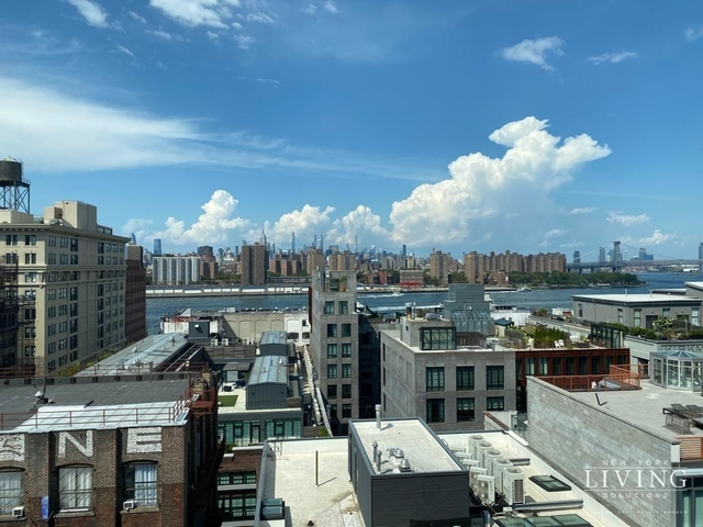 3 Bedrooms, DUMBO Rental in NYC for $5,750 - Photo 1