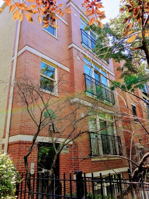 3 Bedrooms, University Village - Little Italy Rental in Chicago, IL for $2,600 - Photo 2