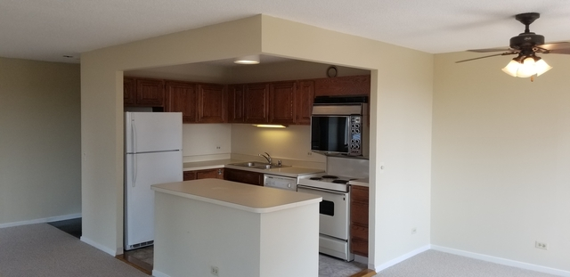 1 Bedroom, Dearborn Park Rental in Chicago, IL for $1,350 - Photo 1