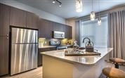 2 Bedrooms, Medical Center Rental in Houston for $1,203 - Photo 1