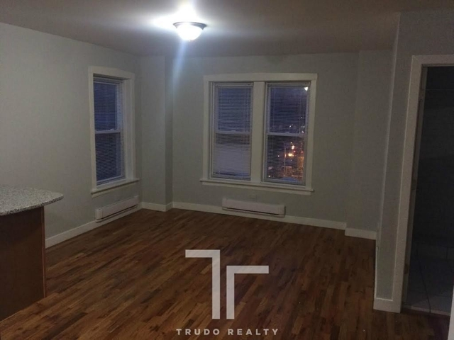 Studio, Rogers Park Rental in Chicago, IL for $915 - Photo 1