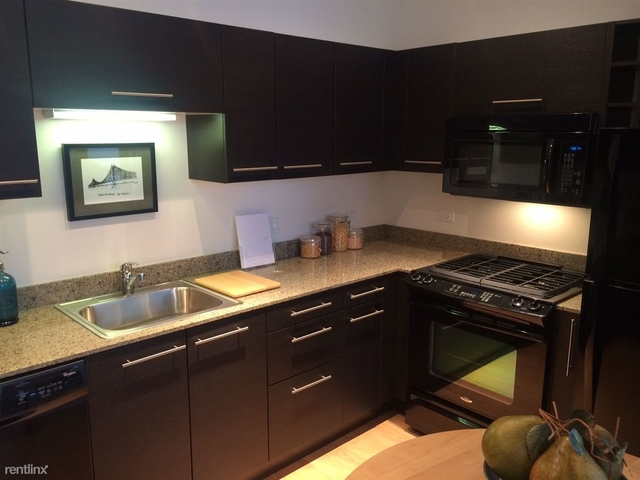 1 Bedroom, Goose Island Rental in Chicago, IL for $1,721 - Photo 2