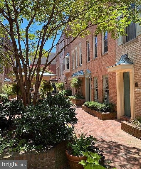 2 Bedrooms, Adams Morgan Rental in Washington, DC for $2,950 - Photo 1