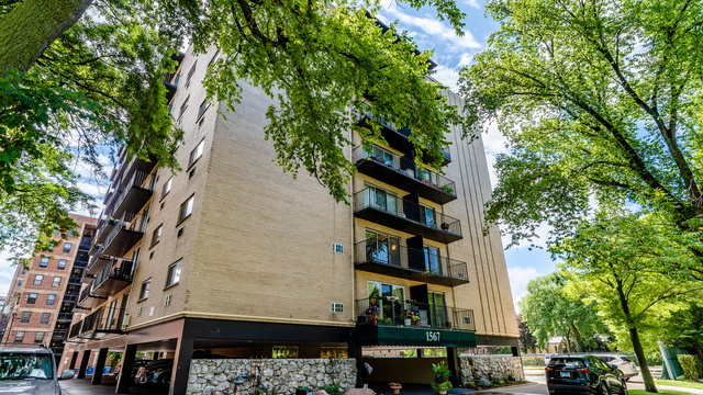 1 Bedroom, Evanston Rental in Chicago, IL for $1,490 - Photo 1