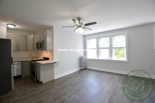 Studio, Rogers Park Rental in Chicago, IL for $1,015 - Photo 1