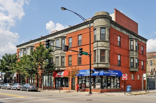 2 Bedrooms, East Ukrainian Village Rental in Chicago, IL for $2,775 - Photo 1