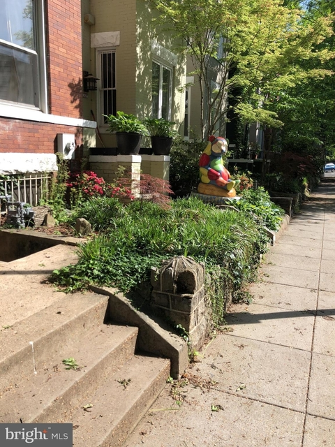 Studio, Lanier Heights Rental in Washington, DC for $1,400 - Photo 2