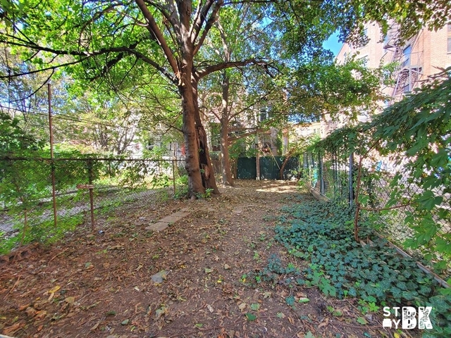 3 Bedrooms, Bedford-Stuyvesant Rental in NYC for $3,795 - Photo 1