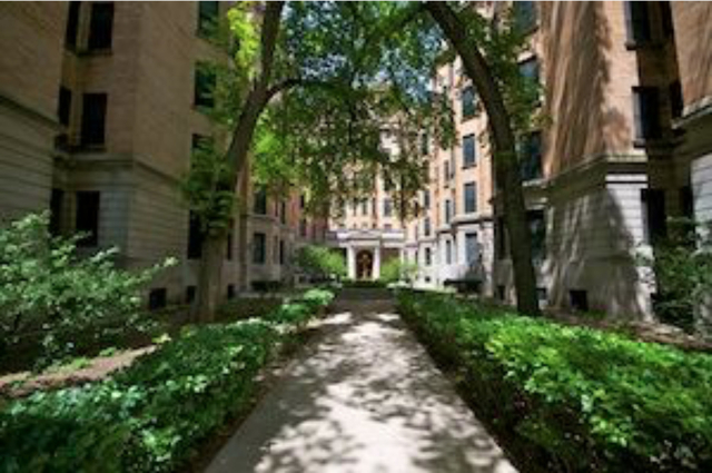 Studio, Lake View East Rental in Chicago, IL for $1,250 - Photo 1