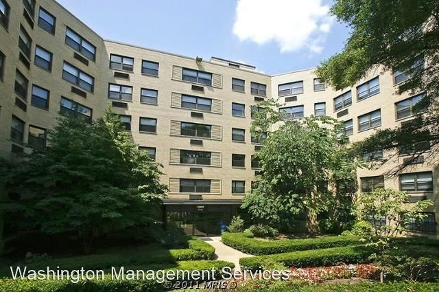 1 Bedroom, Lanier Heights Rental in Washington, DC for $1,575 - Photo 1