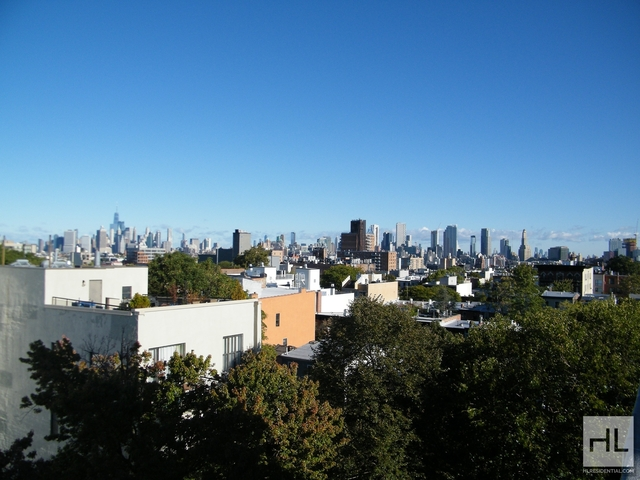 2 Bedrooms, South Slope Rental in NYC for $4,150 - Photo 1