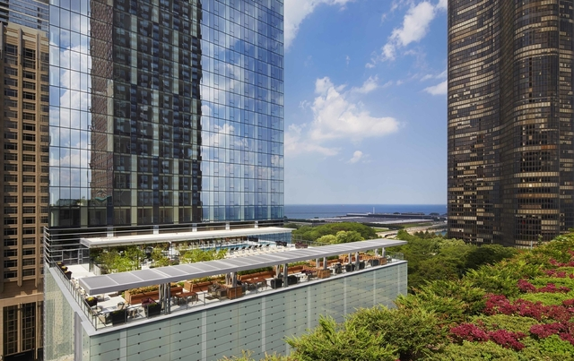 1 Bedroom, Streeterville Rental in Chicago, IL for $2,825 - Photo 1
