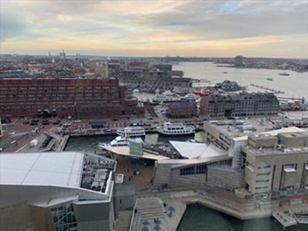 1 Bedroom, Waterfront Rental in Boston, MA for $2,800 - Photo 1