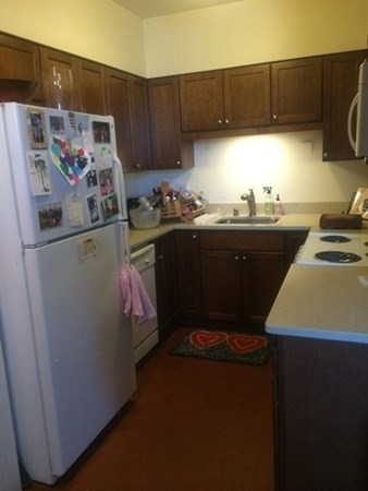 1 Bedroom, Highland Park Rental in Boston, MA for $1,800 - Photo 1