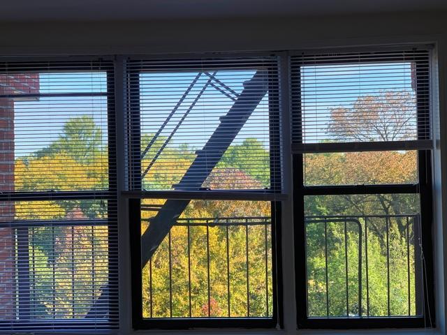 Studio, Windsor Terrace Rental in NYC for $1,775 - Photo 1