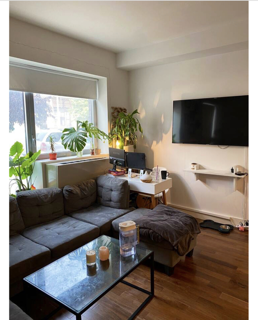 1 Bedroom, Williamsburg Rental in NYC for $2,703 - Photo 1