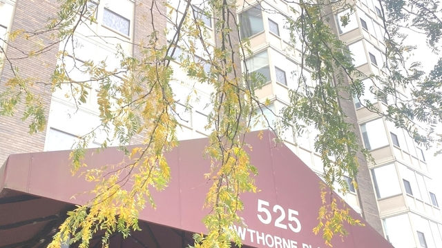 2 Bedrooms, Lake View East Rental in Chicago, IL for $1,921 - Photo 1