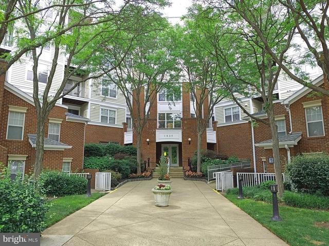 1 Bedroom, Lillian Court Rental in Washington, DC for $1,500 - Photo 1