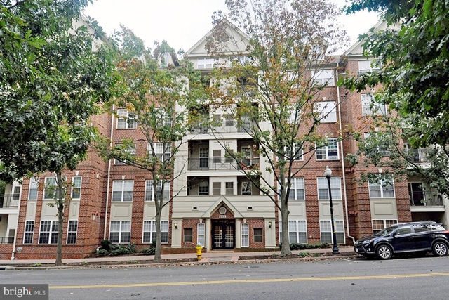 1 Bedroom, Clarendon - Courthouse Rental in Washington, DC for $2,100 - Photo 1