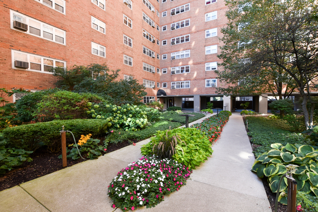 1 Bedroom, Margate Park Rental in Chicago, IL for $1,249 - Photo 1