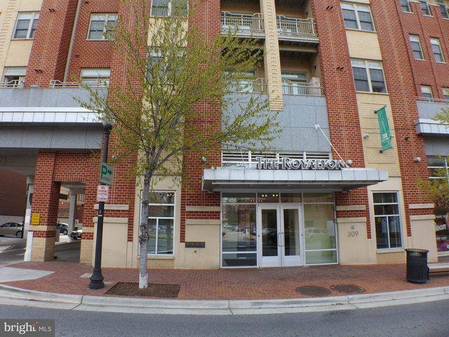 2 Bedrooms, Eisenhower East - Carlyle District Rental in Washington, DC for $2,425 - Photo 1