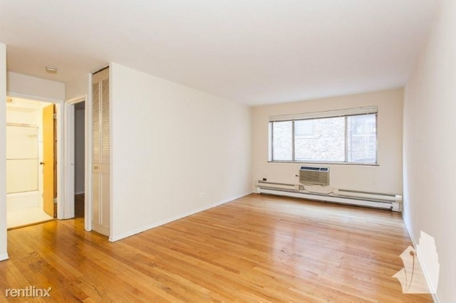 1 Bedroom, Park West Rental in Chicago, IL for $1,250 - Photo 1