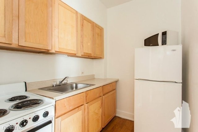 1 Bedroom, Park West Rental in Chicago, IL for $1,295 - Photo 1