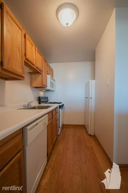 1 Bedroom, Buena Park Rental in Chicago, IL for $1,335 - Photo 1