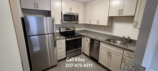 1 Bedroom, Watertown West End Rental in Boston, MA for $1,800 - Photo 1