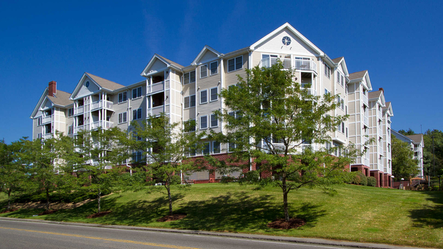 1 Bedroom, Blue Hills Reservation Rental in Boston, MA for $2,300 - Photo 1