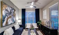 1 Bedroom, Montgomery Rental in Houston for $905 - Photo 1