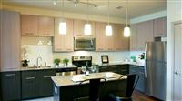 1 Bedroom, En'core Rental in Dallas for $1,175 - Photo 1