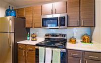 1 Bedroom, Oak Lawn Rental in Dallas for $1,145 - Photo 1