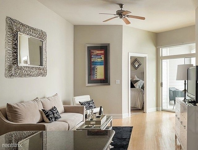 1 Bedroom, Astrodome Rental in Houston for $960 - Photo 1