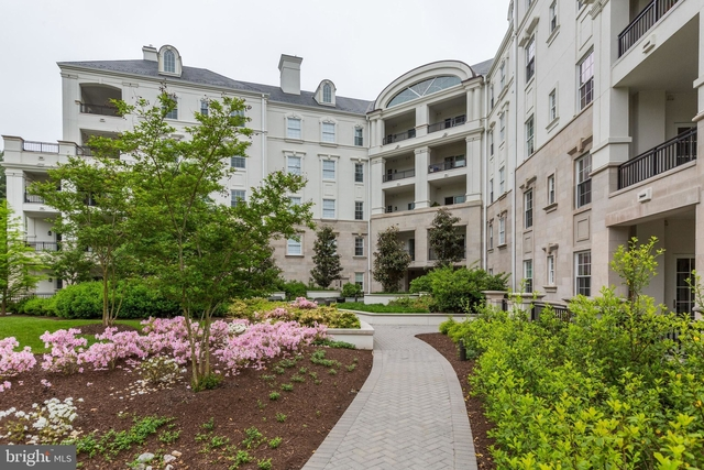 3 Bedrooms, Potomac Rental in Washington, DC for $9,000 - Photo 1