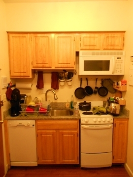 2 Bedrooms, Fenway Rental in Boston, MA for $2,350 - Photo 1