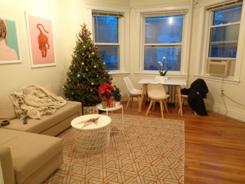 3 Bedrooms, Coolidge Corner Rental in Boston, MA for $5,100 - Photo 1