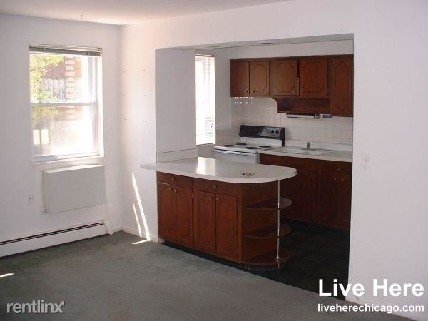 1 Bedroom, Lake View East Rental in Chicago, IL for $1,185 - Photo 1