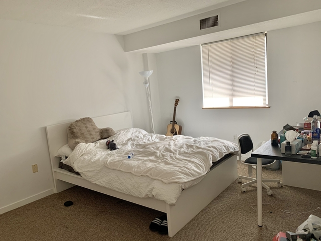 2 Bedrooms, Commonwealth Rental in Boston, MA for $3,300 - Photo 1