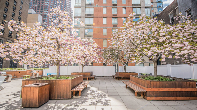 Studio, Hell's Kitchen Rental in NYC for $3,579 - Photo 1