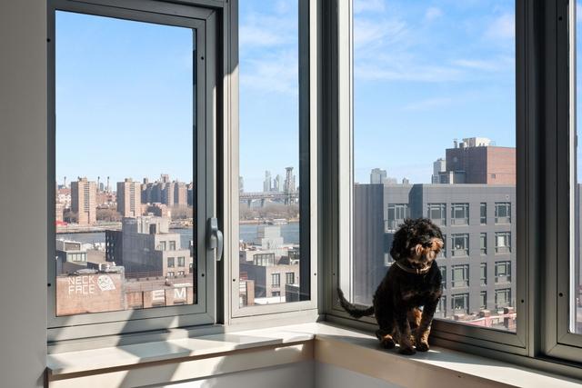 1 Bedroom, DUMBO Rental in NYC for $3,000 - Photo 1