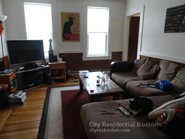 3 Bedrooms, D Street - West Broadway Rental in Boston, MA for $3,300 - Photo 1