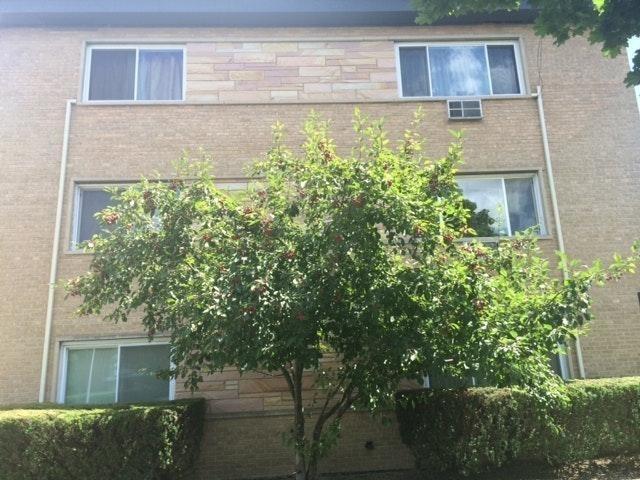 2 Bedrooms, Skokie Rental in Chicago, IL for $1,350 - Photo 1