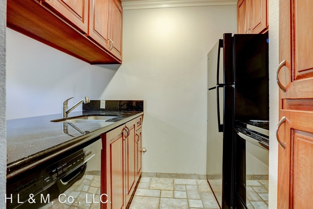 1 Bedroom, Montrose Rental in Houston for $1,195 - Photo 1