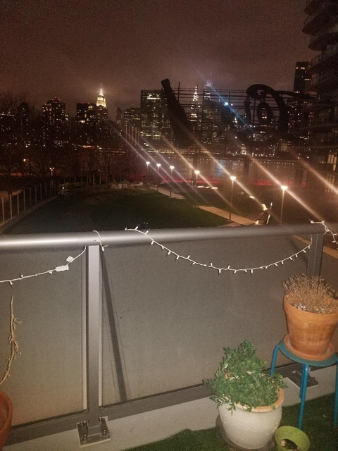 Studio, Hunters Point Rental in NYC for $1,950 - Photo 1