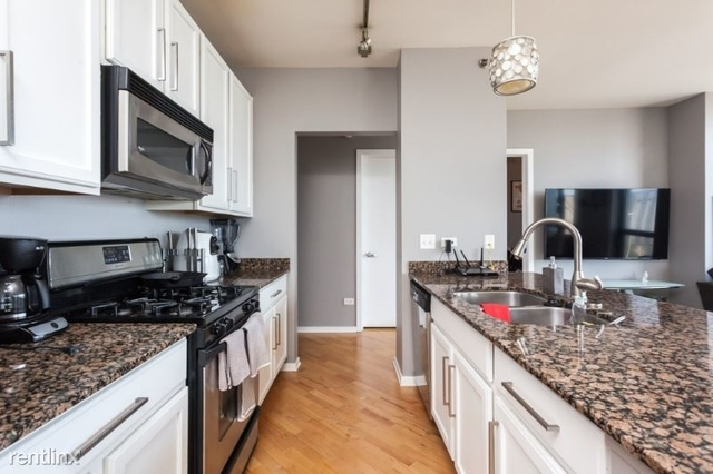 2 Bedrooms, West Loop Rental in Chicago, IL for $3,100 - Photo 1