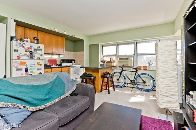 1 Bedroom, Margate Park Rental in Chicago, IL for $1,100 - Photo 1