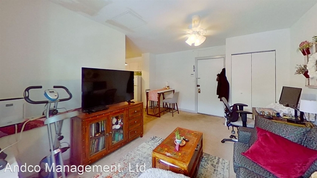 1 Bedroom, Park West Rental in Chicago, IL for $1,300 - Photo 1